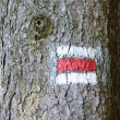 Tourist mark on tree - Stock Photo