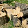 Stock Photo: Sawn wood