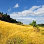 Cervena studna, autumn in Banska Stiavnica, Slovakia Unesco — Stock Photo #6675613
