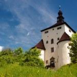 New Castle in Banska Stiavnica, Slovakia — Stock Photo #6675724