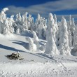 Winter landscape with snow in mountains, Slovakia — Stock Photo