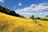Cervena studna, otoño en banska stiavnica, Eslovaquia unesco — Foto de Stock