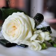 Stock Photo: Wedding feather roses for bridegroom