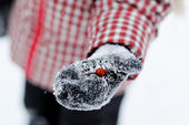 Child girl shows a wild rose berry in a mitten — Stock Photo