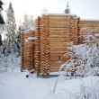 Unfinished wooden country house in winter — Stock Photo