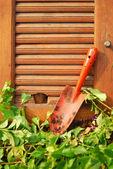 Garden tools on wooden wall — Stock Photo