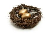 Huevos de oro — Foto de Stock