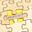 Stock Photo: Golden Opportunity