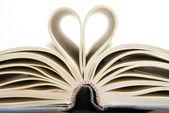 Kitaplar için aşk — Stok fotoğraf