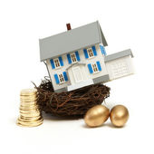House In a Nest — Stock Photo