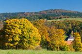 Autumn Countryside — Stock Photo