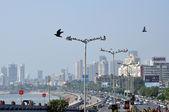 Aerial View of Mumbai — Stock Photo