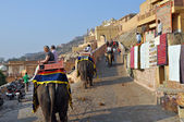 Elephant Ride in the Amber Fort, India — Stock Photo
