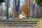 在秋季期间公园 — 图库照片