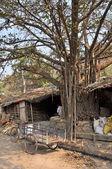 Slum in India — Stockfoto