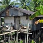 House of Borneo Headhunters — Stock Photo #6694122