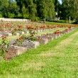 National Cemetery in Terezin — Stock Photo