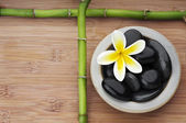 Spa still life background, with flower, bamboo and massage stone — Stock Photo
