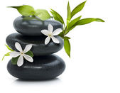 Spa still life with white flowers — Stock Photo