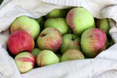 Bag of Red-Green Apples in summer — Stock Photo