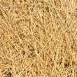 Dry hay — Stock Photo