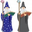 Wizard — Stock Vector #6536264