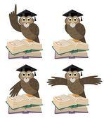 Professor Owl 2 — Stock Vector