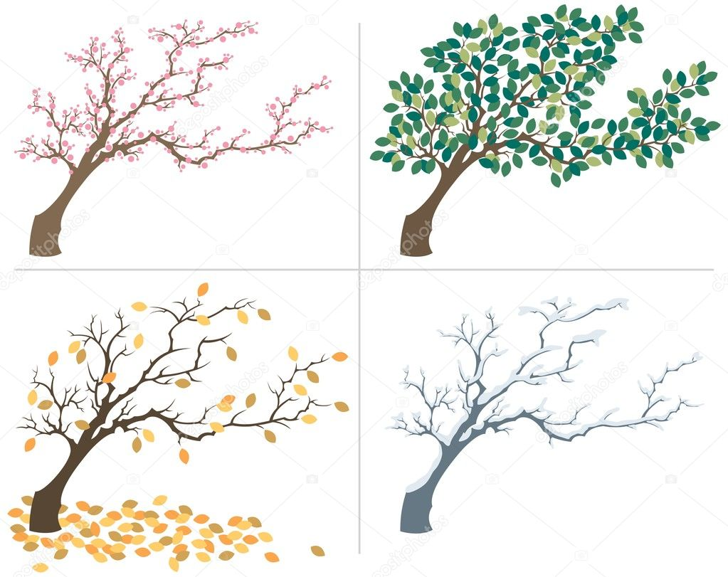 A tree, shown during the four seasons. No transparency and gradients used. — Stock Vector #6535997