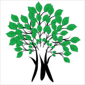Tree with green leafs — Stock Vector