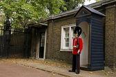English Guard — Stock Photo