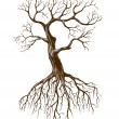 Old tree — Stock Vector #6584725
