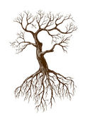 Old tree — Stock Vector