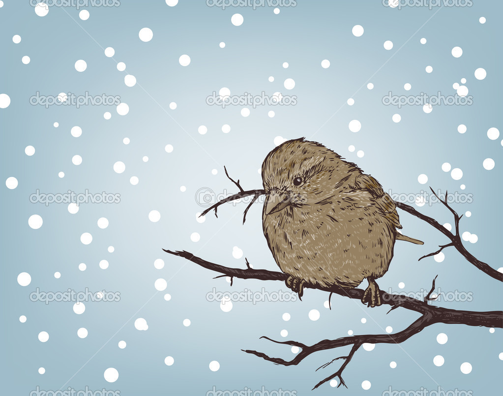 Winter background with sparrow on branch — Stock Vector #6584442