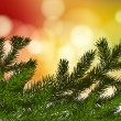 Royalty-Free Stock Imagen vectorial: Fir branches