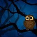 Cute little owl — Stock Vector