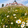 Stock Photo: Monastery in fields