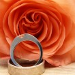 Wedding rings on a red rose — Stock Photo
