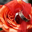 Wedding rings on a red rose — Stock Photo #6599781