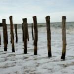Playa, mar, normandía — Stock Photo #6687048