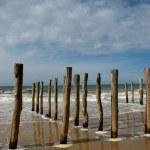 Playa, mar, normandía — Stock Photo #6687068