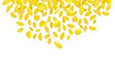 Folhas de outono caindo de amarelo — Foto Stock