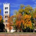 Lucca, torre del Duomo di San Martino — Stock Photo