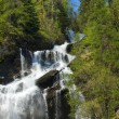 Stok fotoğraf: Beautiful waterfall in north of Italy - Valle D' Aosta