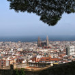 View of the City of Barcelona — Stock Photo