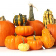 Pumpkins and gourds — Stock Photo #6578597