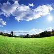 Green pasture and bright blue sky — Stock Photo