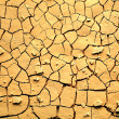 Stock Photo: Dried cracked earth