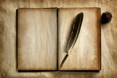 Quill on old book — Stock Photo