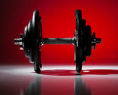 Single dumbbell dramatically lit on graduated red background. — Stock Photo