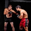 Mixed martial artists fighting - punching — Stock Photo #6533054